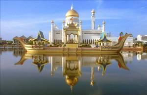 palace 9
