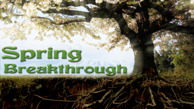 Spring Breakthrough