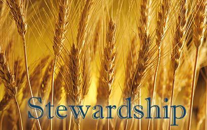 stewardship_wheat
